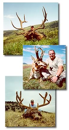 Kennedy Hunting Services   guided hunts for deer, elk